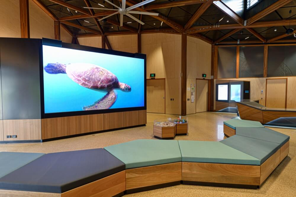 Mon Repos Turtle Centre Courtyard LED screen display installation
