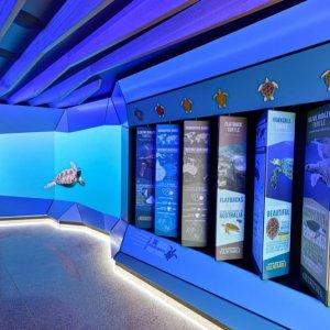 Mon Repos Turtle Centre Interpretive LED screen display installation