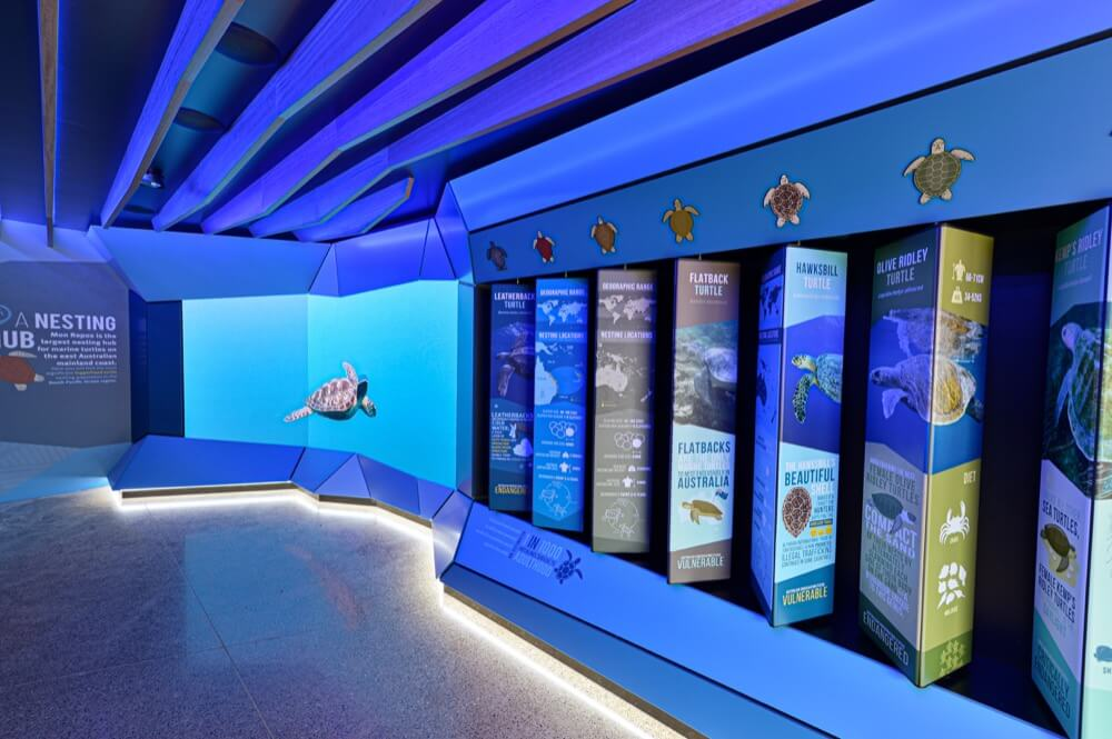 Mon Repos Turtle Centre Interpretive LED screen display installation